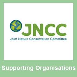 Supporting - JNCC