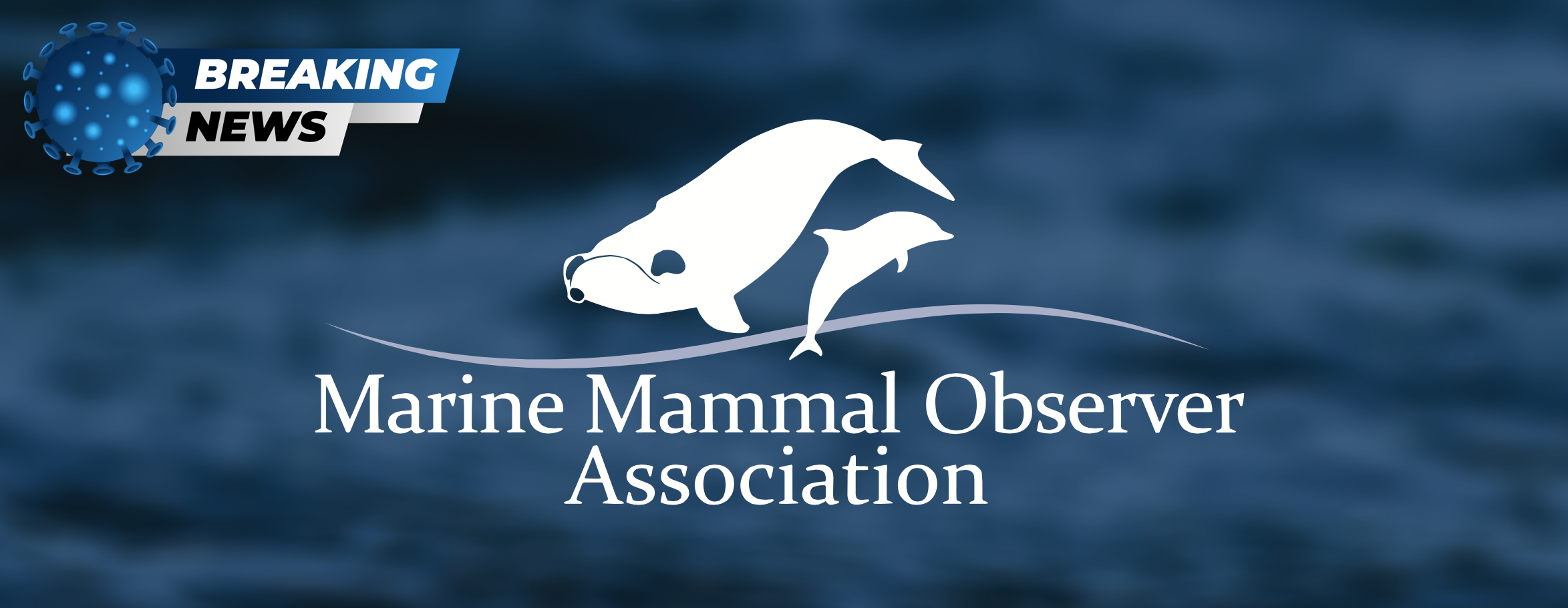 COVID-19 and the Marine Mammal Mitigation Industry