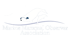 mmoa footer logo